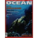 Koktejl Oceán, Zima 2004
