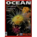 Koktejl Oceán, Jaro 2005