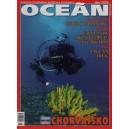 Koktejl Oceán, Léto 2005