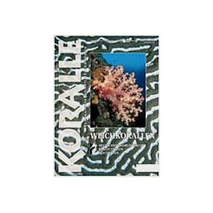 Koralle Nr.12, Dezember 2001/Januar 2002
