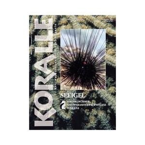 Koralle Nr.31, Februar/Marz  2005