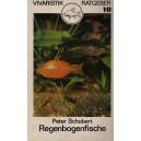 Schubert Peter: Regenbogenfische
