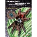 Striffler: Die Martinique-Baumvogelspinne Avicularia versicolor + Avicularia minatrix, A. purpurea & A. laeta