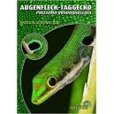 Schönecker: Der Augenfleck-taggecko Phelsuma quadriocellata