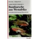 Linke, Staeck: Buntbarsche aus Westafrika Afrikanische Cichliden I.