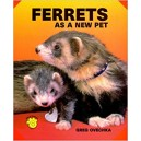 Ovechka Greg: Ferrets As a New Pet