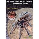 Striffler F.B.: Die Rote Chile-Vogelspinne Grammostola rosea, andere Grammostola - Arten