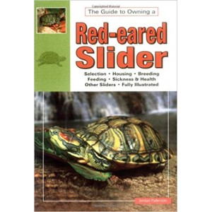 Patterson Jordan: The Guide to Owning a Red-eared Slider