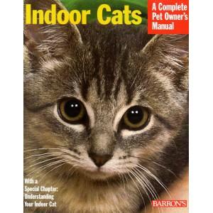 Behrend: Indoor Cats