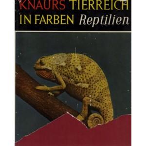 Schmidt, Inger: Knaurs Tierreich in Farben - Reptilien (A5)