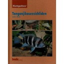 Melke Sabine: Tanganjikaseecichliden