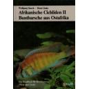 Staeck Wolfgang - Linke Horst: Afrikanische Cichliden II., Buntbarsche aus Ostafrika