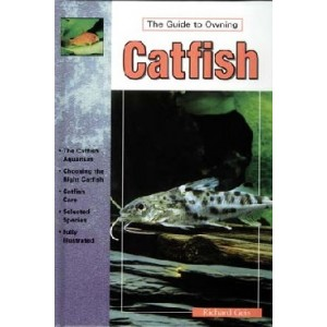 Geis: The Guide to Owning Catfish
